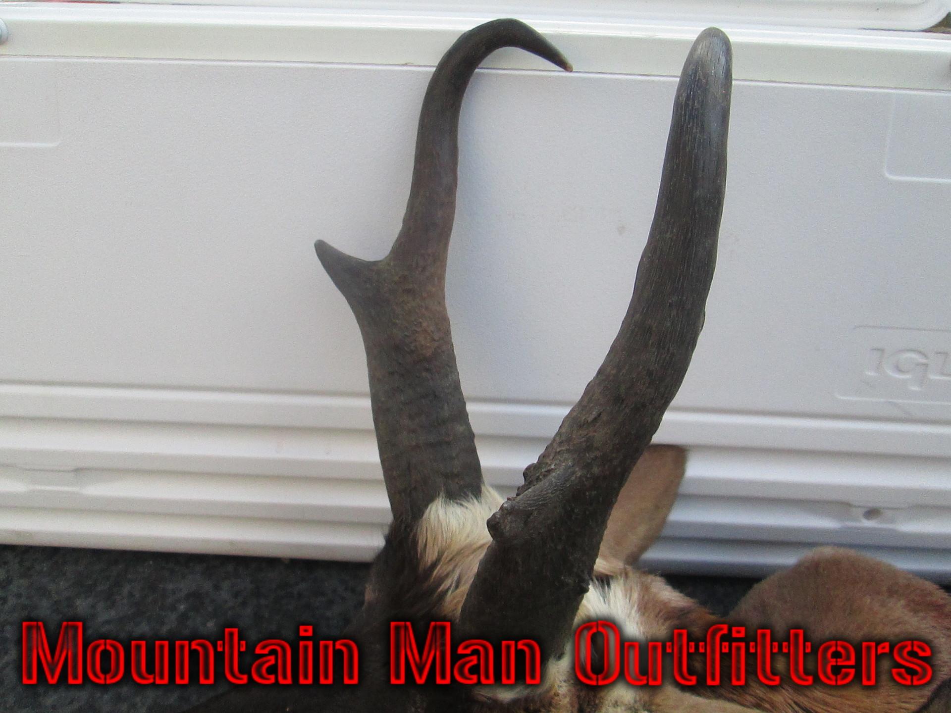 2016_antelope_hunt