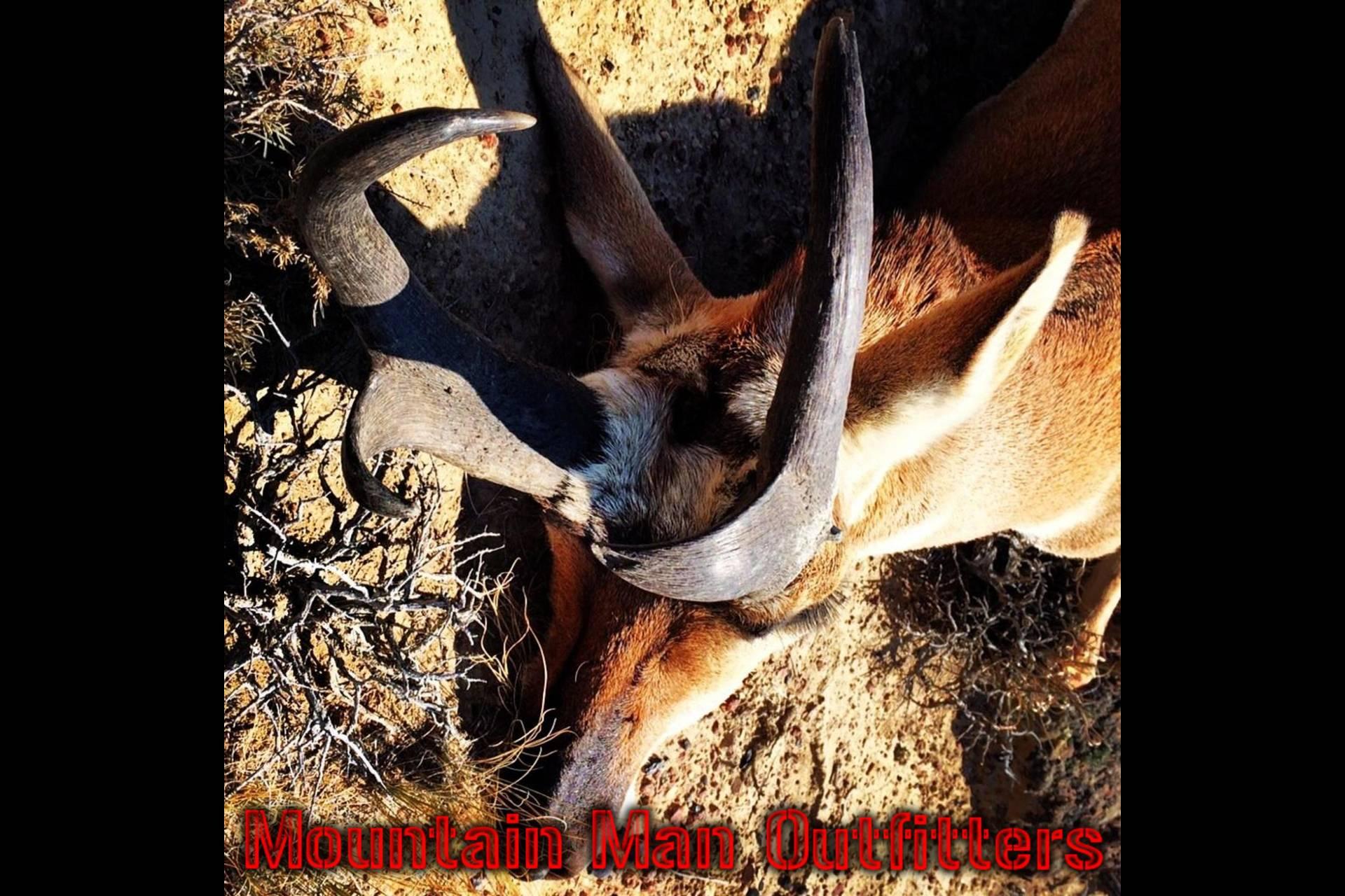 2014_antelope_hunt1
