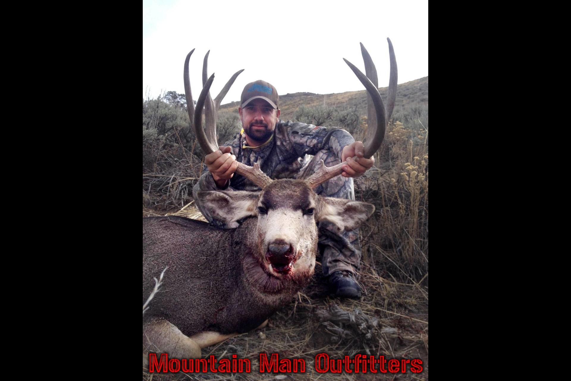 2015_mule_deer13