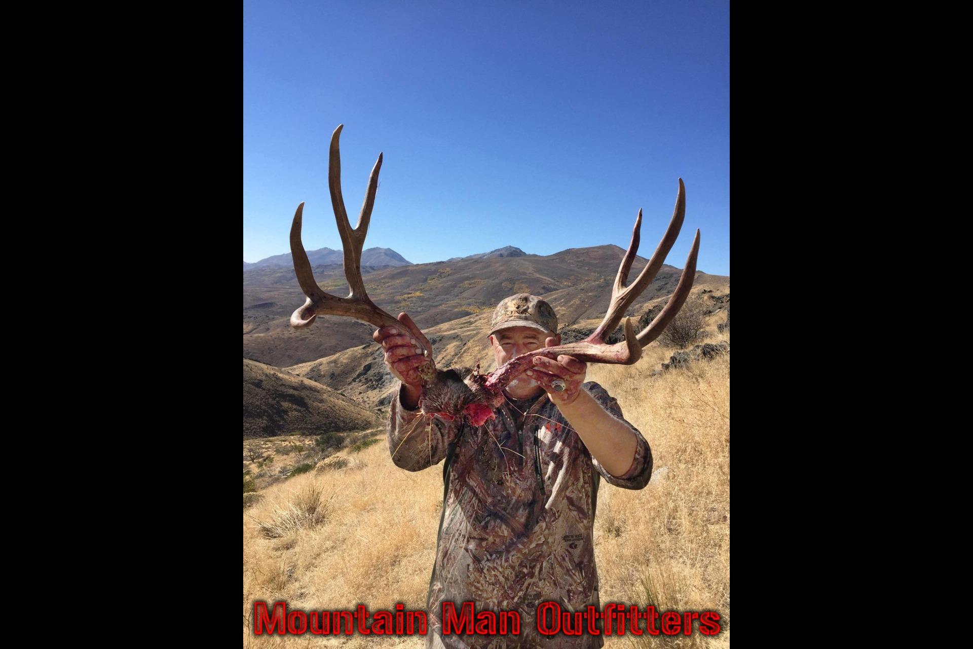 2015_mule_deer15