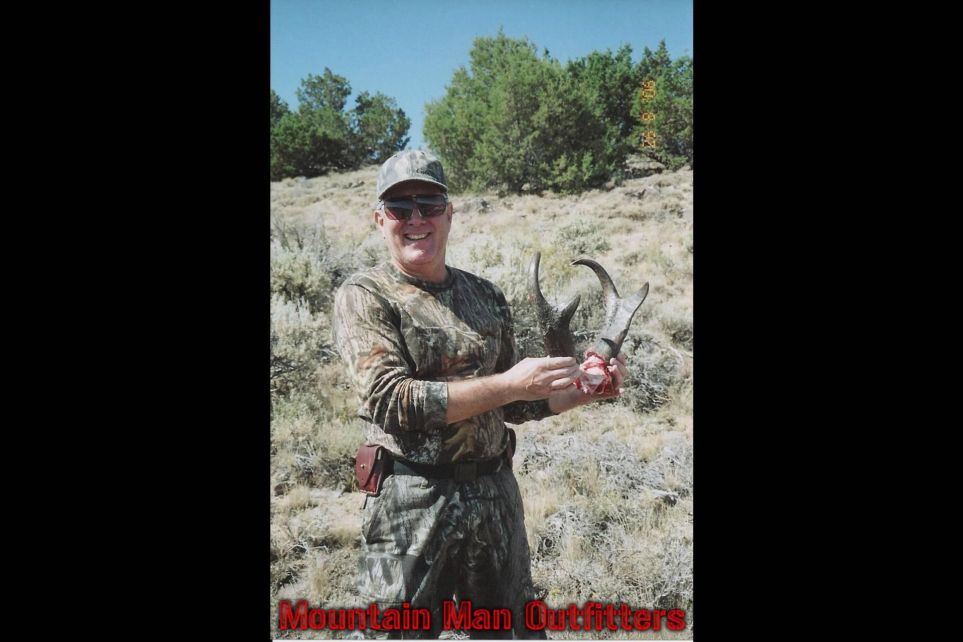 antelope_3